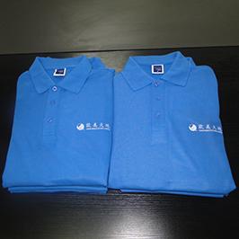 Polo forması A3 t-shirt printer WER-E2000T tərəfindən xüsusi çap nümunəsi
