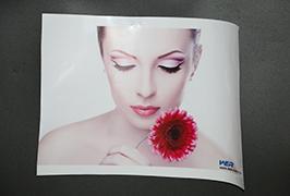 3.2m (10 fut) eko solvent printerli WER-ES3202 tərəfindən hazırlanmış Self Adhesive Vinil